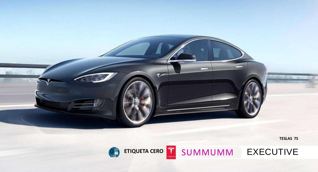 Tesla 75